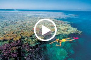 Great Barrier Reef Totalsolareclipses Com
